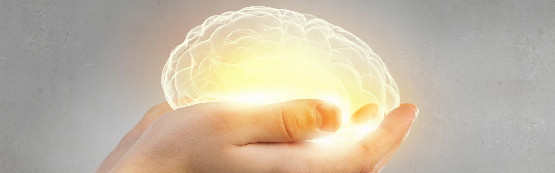 cognitive ageing CEPAR